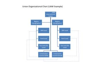 Union Organizational Chart UAW Example