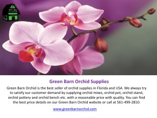 Shop Orchid Pots Online in Florida at Best Price