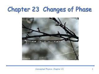 Chapter 23  Changes of Phase