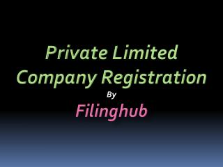 Private Limited Company Registration By Filinghub.Net