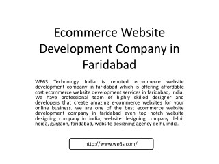 Ecommerce Website Development in Faridabad