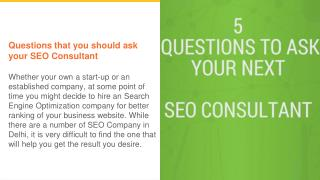 Questions to ask your SEO Consultant
