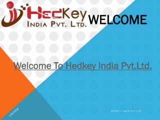 Website Designing Company in Delhi | India- Hedkey India