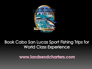 Book Cabo San Lucas Sport Fishing Trips for World Class Experience