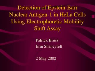 Detection of Epstein-Barr Nuclear Antigen-1 in HeLa Cells Using Electrophoretic Mobility Shift Assay