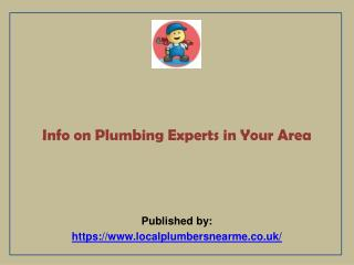 Info on Plumbing Experts in Your Area