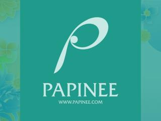 Papinee Storytelling Toy Manufacture company