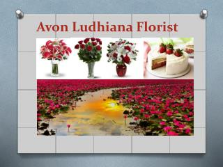 Send Cakes and Flowers to Ludhiana
