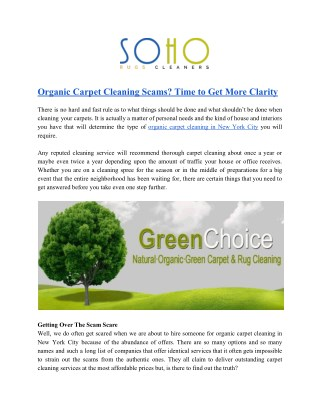 Organic Carpet Cleaning Solutions in New York City