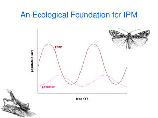 An Ecological Foundation for IPM