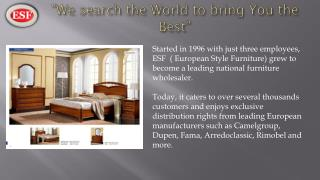 Wholesale European furniture