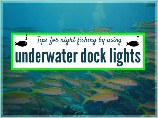 Best Fishing Lights for Boats