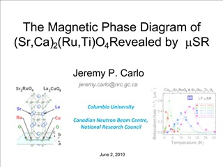 The Magnetic Phase Diagram of Sr,Ca2Ru,TiO4 Revealed by mSR