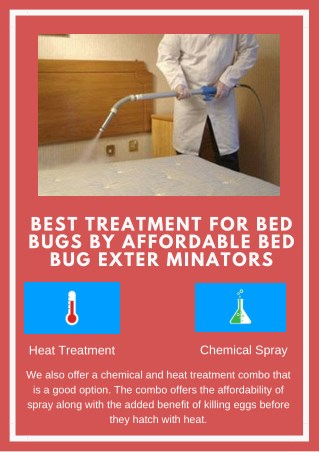 Bed Bug Treatment Options Offered By Affordable Bed Bug Exterminators