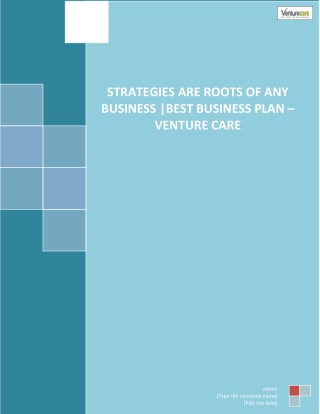 Strategies Are Roots of Any Business Best Business Plan – Venture Care