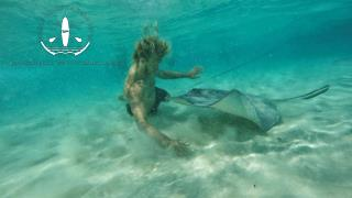Experience Snorkeling with Perfect Equipment in the Cayman Islands