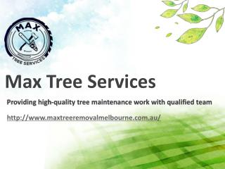 Tree Services Melbourne | Max Tree Services