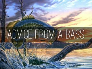 Advice From a Bass