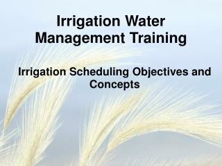 Irrigation Scheduling Objectives and Concepts