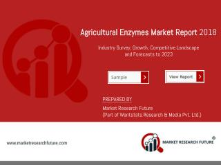 Agricultural Enzymes Market Future Roadmap, Strategies, Ecosystem Player Profiles, and Challenges.