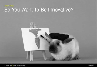 So You Want To Be Innovative ?