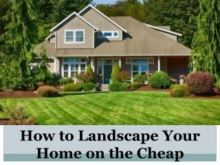 How to Landscape Your Home on the Cheap