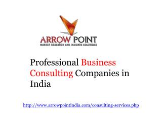 Professional Business Consulting Companies in India