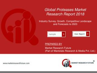 Types of Proteases (Peptidases) In Market | U.S., Germany, and Netherlands Are Major Importers of Protease Enzymes | Rep