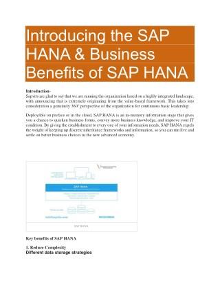SAP HANA Training Material PDF