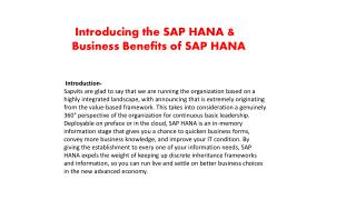 SAP HANA Basics PPT