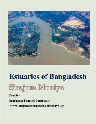 Estuaries of Bangladesh