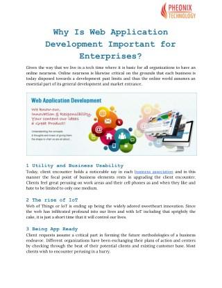 Web Application Development in Chandigarh