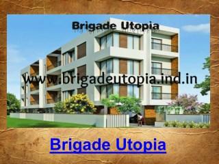 Brigade Utopia Whitefield