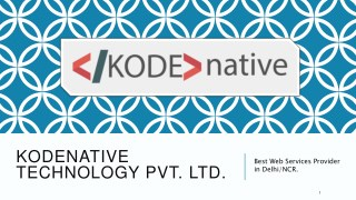 Kodenative - Best Web Services Provider in Delhi/NCR