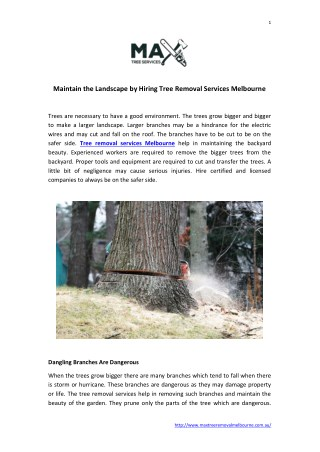 Tree Removal Services Melbourne | Max Tree Services