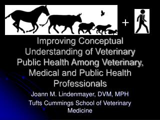 Improving Conceptual Understanding of Veterinary Public Health Among Veterinary, Medical and Public Health Professionals