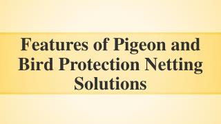 Features of Pigeon Protection Netting Solutions in India