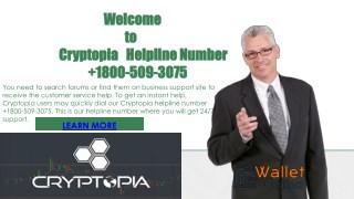 cryptopia helpline number