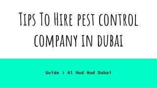 Tips To Hire pest control company in Dubai