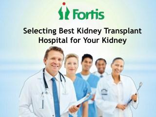 Selecting Best Kidney Transplant Hospital for Your Kidney