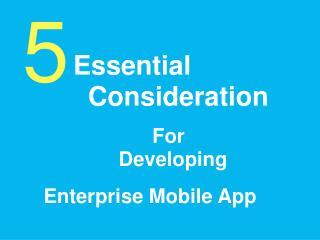 5 Important Factors For Developing Enterprise Mobile App