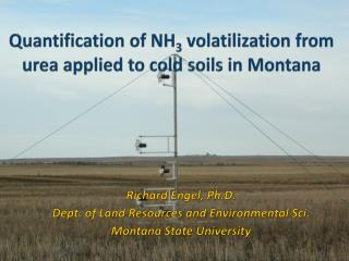 Quantification of NH 3  volatilization from urea applied to cold soils in Montana