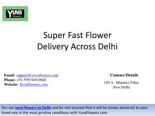 Super Fast Flower Delivery Across Delhi