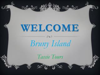 Best Experienced Bruny Island Tours in Alonnah