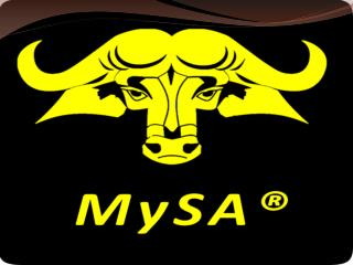 MySAScore - What is Social Analysis?