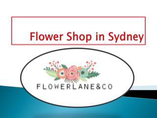Affordable Wedding Flower Shop in Sydney -  Flowerlane & Co