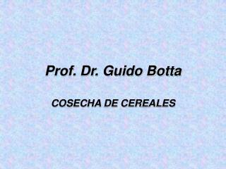 Prof. Dr. Guido Botta