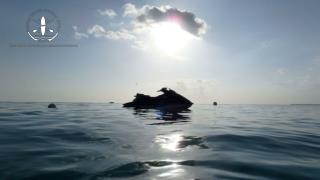 Make Your Trip Memorable with Exciting Water Sports in Grand Cayman