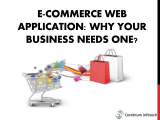 E-commerce Web Application: Why Your Business Needs One?