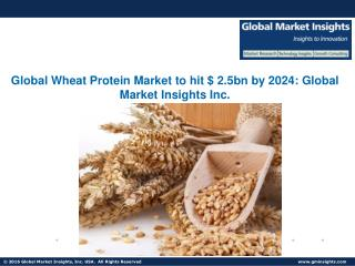 Wheat Protein Market share to grow at 4% CAGR from 2017 to 2024
